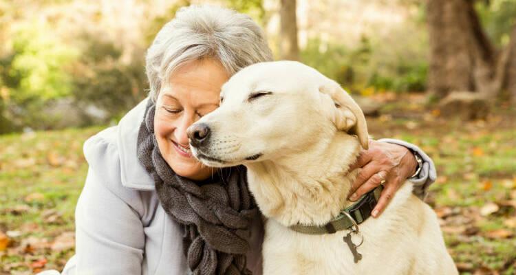 Seniors and Pets, Seniors and Pets: A Great Relationship, Senior Pet Care, Senior Care, Caregiver